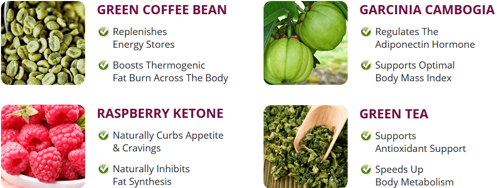Max Keto Burn ingredients