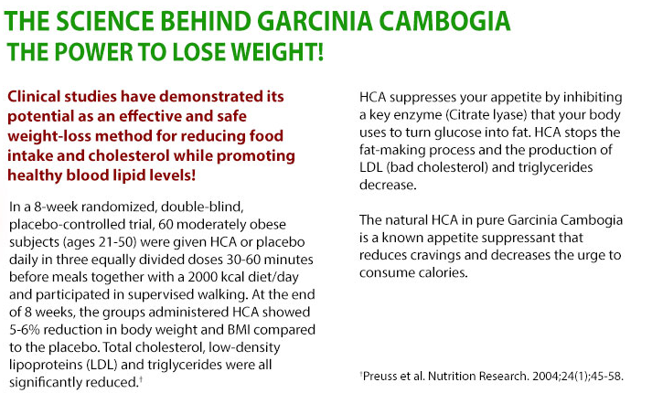 Nutra SX Garcinia Cambogia ingredients