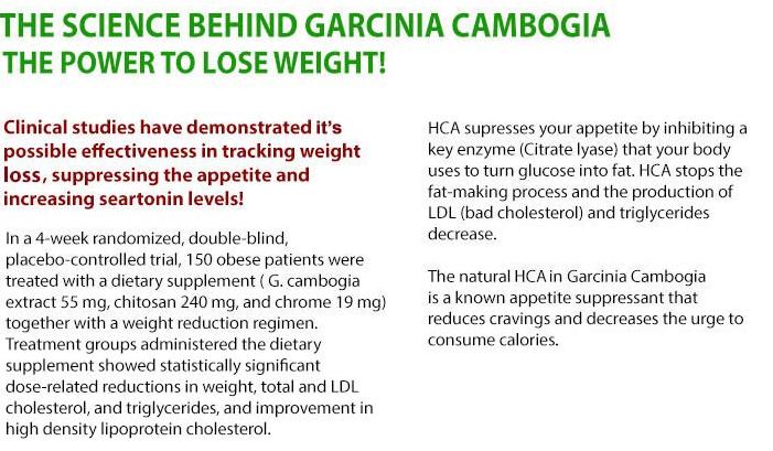 Ultra Pure Garcinia Cambogia